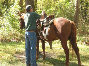 Stay in the Saddle trailride